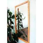 Изображение Зеркало наст. в раме 1200 х 600 мм. 02.6.57-1 - изображение 1