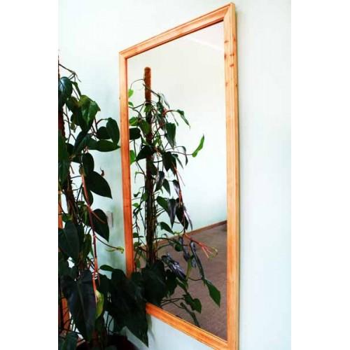 Изображение Зеркало наст. в раме 1200 х 600 мм. 02.6.57-1 - изображение 2